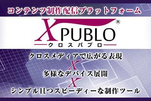 ソリューション(X PUBLO)